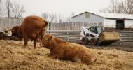 Техника Bobcat для сельского хозяйства